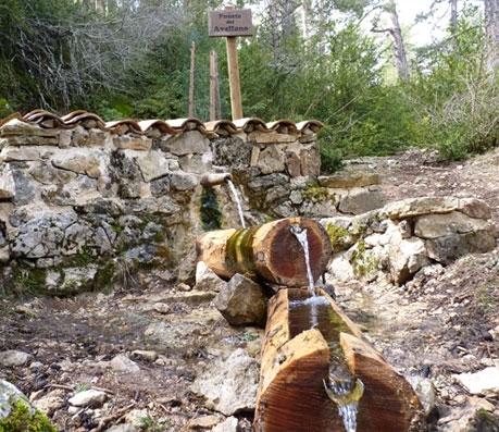 Fuente del Avellano